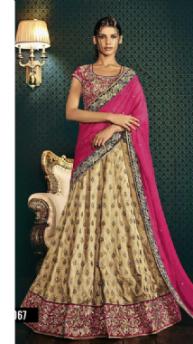 Goldy Beige Lehenga With Contrast Blouse